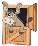 farm-donkey.jpg